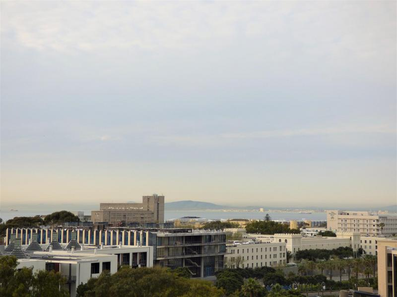 Property For Rent in Green Point, Cape Town 19